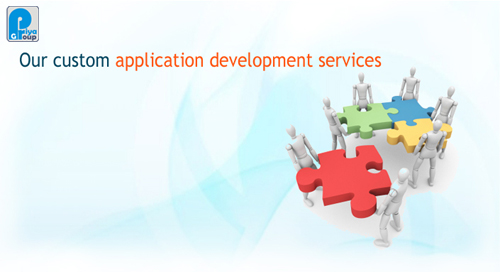 Custom Web Application Softwares
